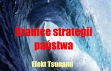 Lamentowicz_Wojciech_Granice_strategii