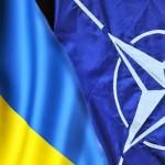 Kazimierz Wóycicki: Większość Ukraińców chce do NATO
