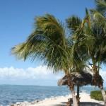 Ronald Lasecki: Tragedia Florydy